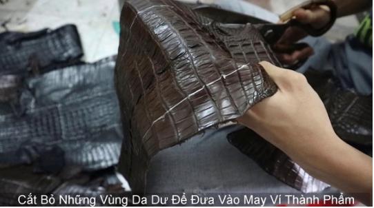 Tiến hành cắt da để làm ví Handmade cá sấu