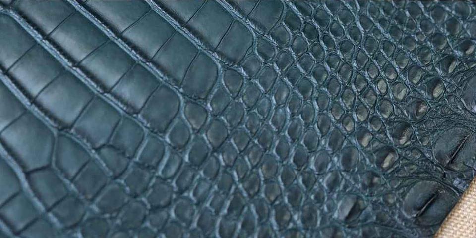 Da cá sấu Alligator là gì - Đặc điểm - Cách Nhận Biết